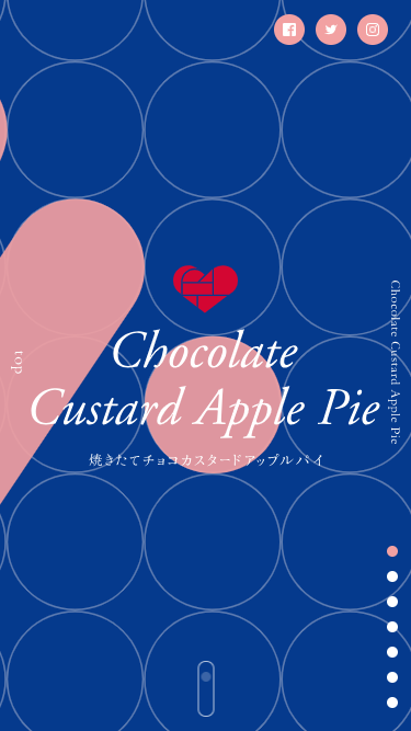 Chocolate Custard Apple Pie